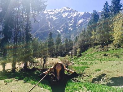 Forest Walk around Shilla